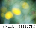 beautiful background bokeh Abstract , lighting 33811738