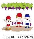 ぶどう狩り 園児 ぶどう畑のイラスト 33812075