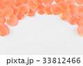 オレンジ オレンジ色 橙の写真 33812466