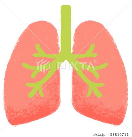 医療 肺 33816711