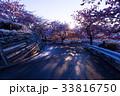 松田山 早春 桜の写真 33816750