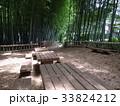 竹林公園 33824212