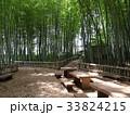 竹林公園 33824215