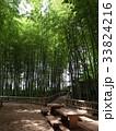竹林公園 33824216
