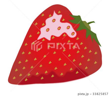 苺のイラスト素材 [33825857] - PIXTA