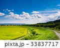 北海道 富良野 田園風景の写真 33837717