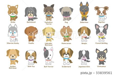 犬のセット 33839561