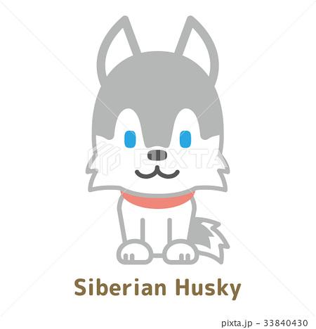 シベリアンハスキーのイラスト素材 33840430 Pixta