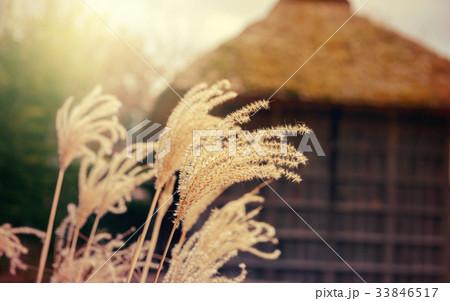 レトロな日本の風景 33846517