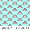 うさぎ ウサギ 兎のイラスト 33850111