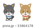 柴犬 年賀状 ベクターのイラスト 33864178