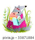 くま クマ 熊のイラスト 33871884