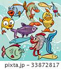 サカナ 魚 魚類のイラスト 33872817
