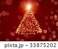 クリスマス 樹木 樹のイラスト 33875202