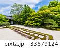京都 天授庵 東庭の写真 33879124