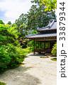京都 天授庵 書院の写真 33879344