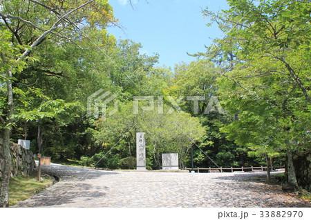 上野城跡 33882970