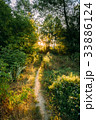 Summer Landscape With Forest Path Going Ahead To 33886124