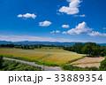 丘 北海道 晴れの写真 33889354