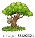 樹木 樹 ツリーのイラスト 33892321