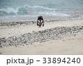 浜辺を飛ぶ黒柴 33894240