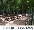 竹林公園 33904209