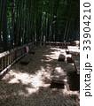 竹林公園 33904210