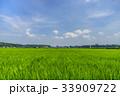 夏 田園 風景の写真 33909722
