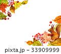リスと落ち葉のフレーム 33909999
