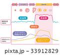 基礎体温表 基礎体温 女性ホルモン 33912829