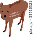 小鹿 33916321