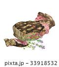 ビーフ 牛肉 食のイラスト 33918532