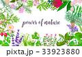 花 かおり フレグランスのイラスト 33923880