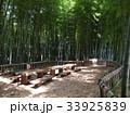 竹林公園 33925839