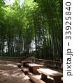 竹林公園 33925840