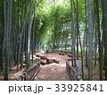 竹林公園 33925841