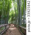 竹林公園 33925842
