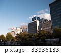 札幌市大通公園 33936133