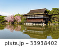 平安神宮の枝垂れ桜 33938402