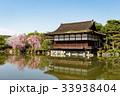 平安神宮の枝垂れ桜 33938404