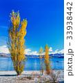 ワナカ湖 ニュージーランド、南島 33938442
