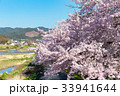 賀茂川の春 33941644