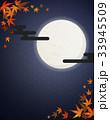 満月 紅葉 夜 33945509