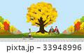 33948996