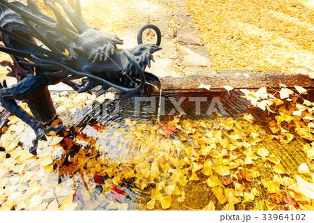 落葉の日本庭園 33964102