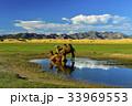 ラクダ モンゴル 水たまりの写真 33969553