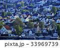 木 都市 都会の写真 33969739
