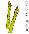 アスパラガス 水彩画 33972892
