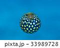 ミゾレフグ フグ 魚の写真 33989728
