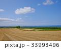 北海道の日常 33993496